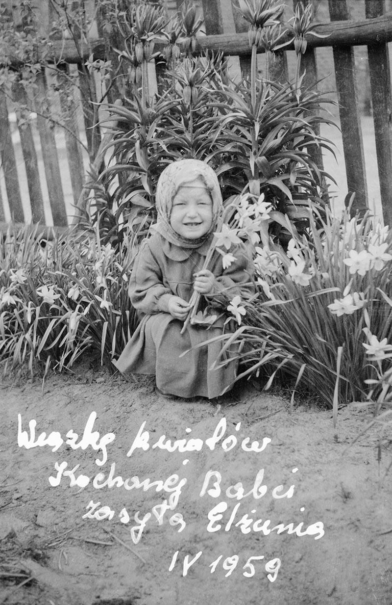 Dziewczynka z żonkilami, Brzózka, Dolny Śląsk, kwiecień 1959 r.