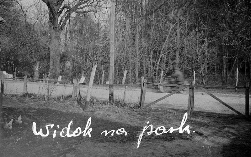 Widok na park, Brzózka, Dolny Śląsk, koniec lat 50. XX w.