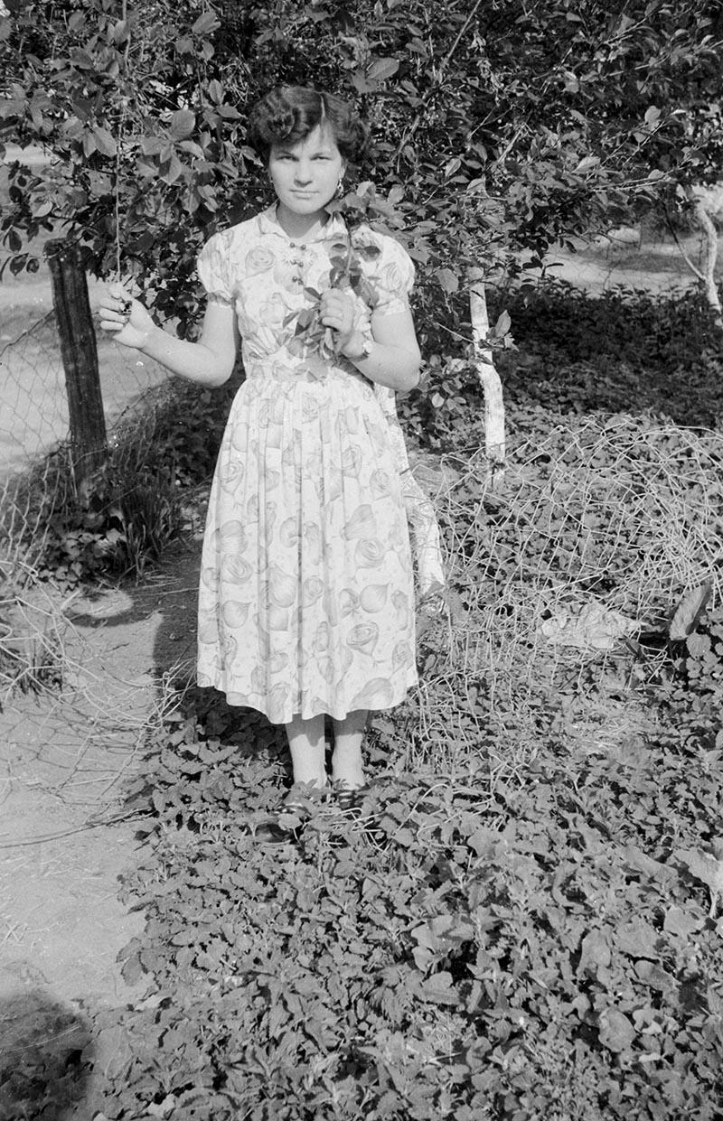 Dziewczyna z gałązką, Brzózka, Dolny Śląsk, lata 50. XX w.