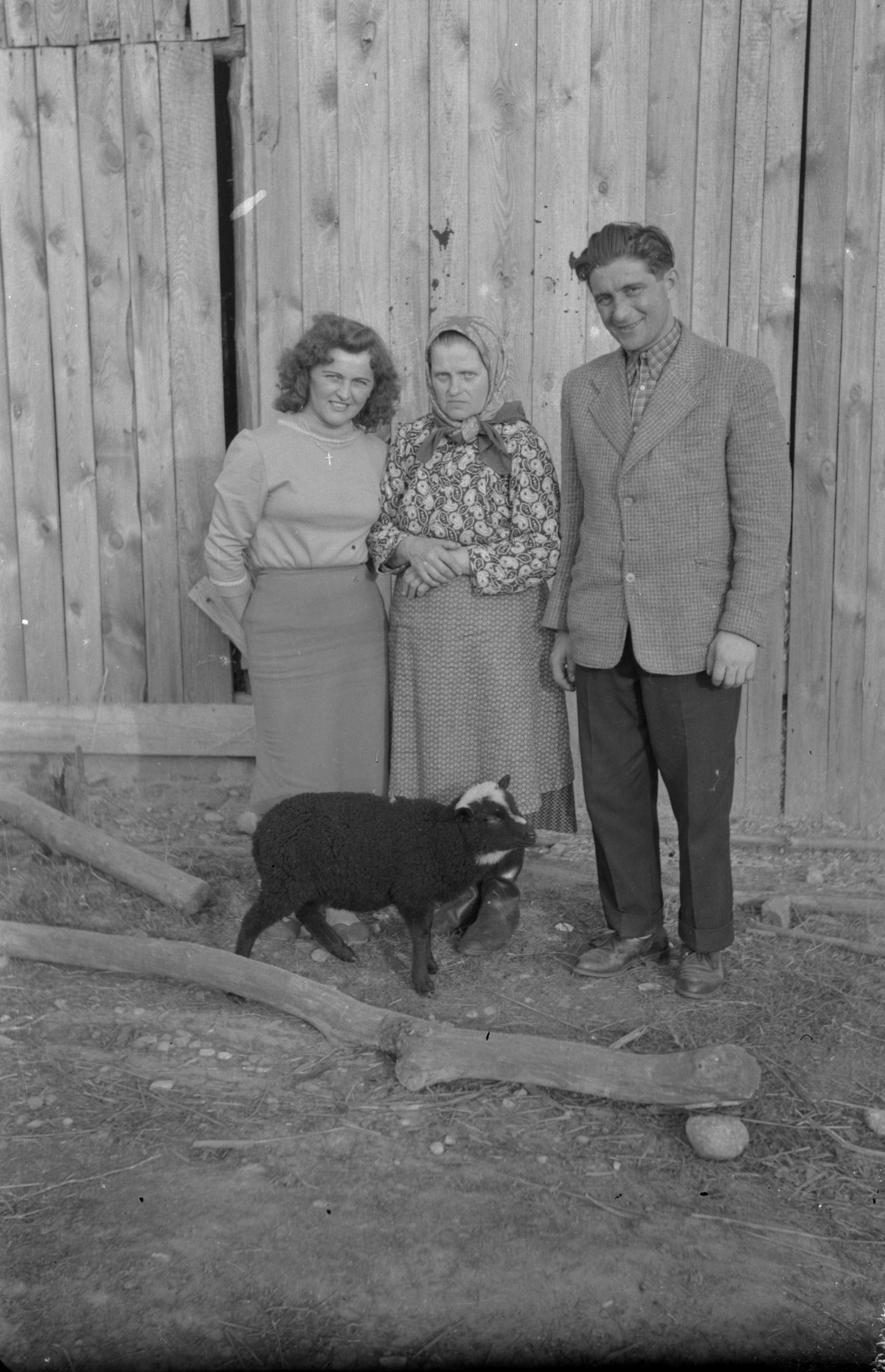 Członkowie rodziny Kubajów z owcą, Brzózka, Dolny Śląsk, lata 50. XX w.