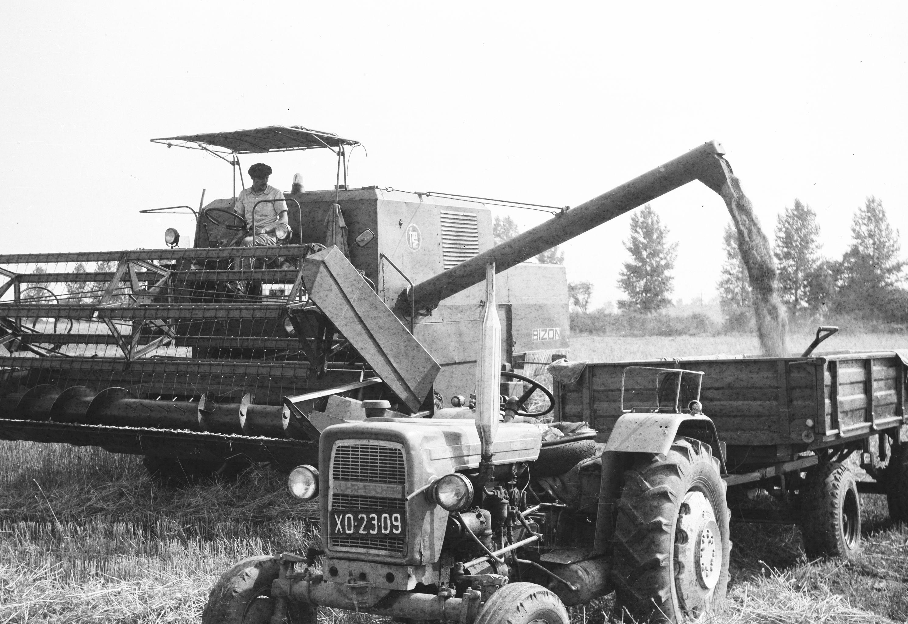 Praca na kombajnie, Brzózka, Dolny Śląsk, lata 80. XX w.