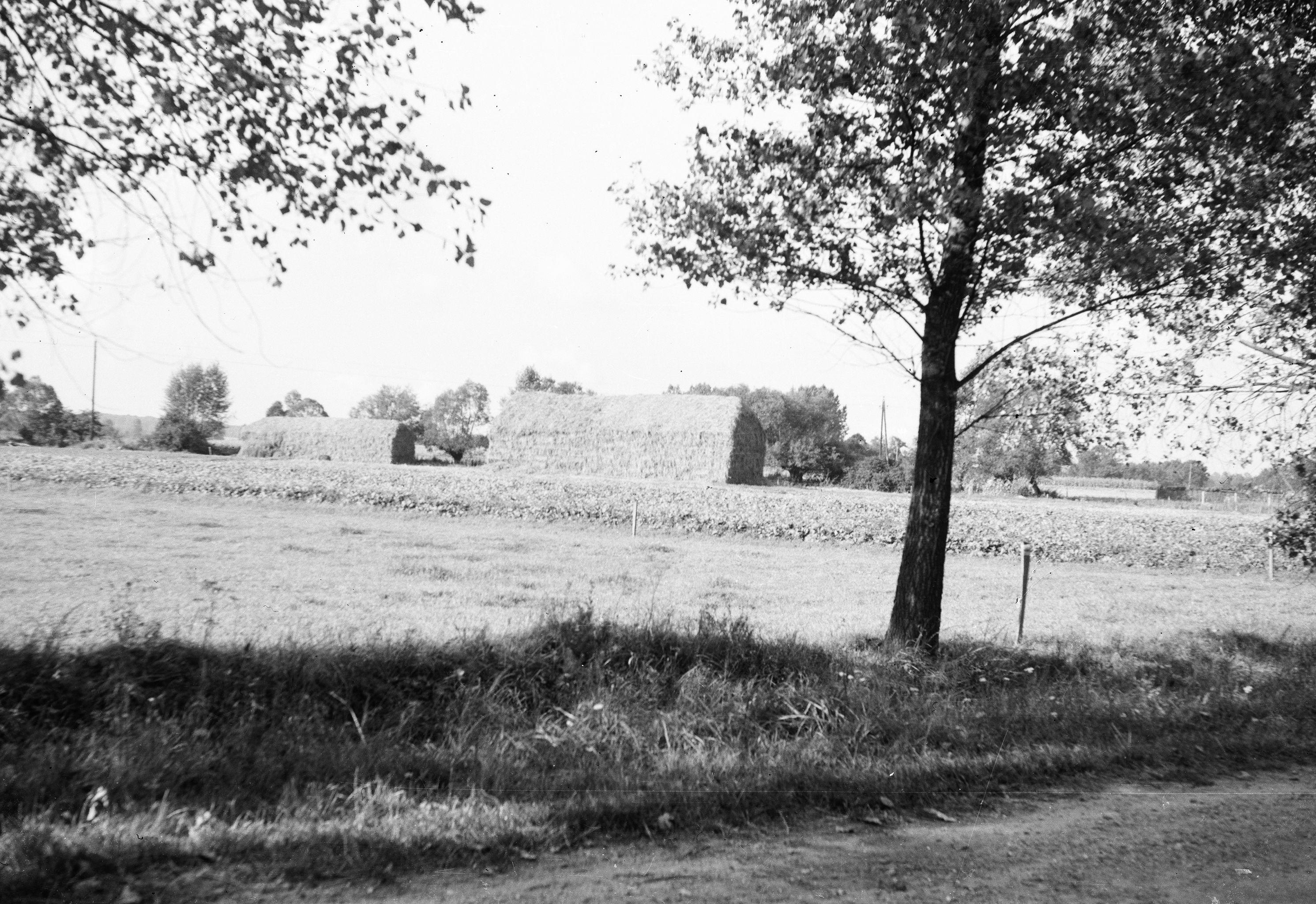 Widok na pola, Brzózka, Dolny Śląsk, lata 80. XX w.