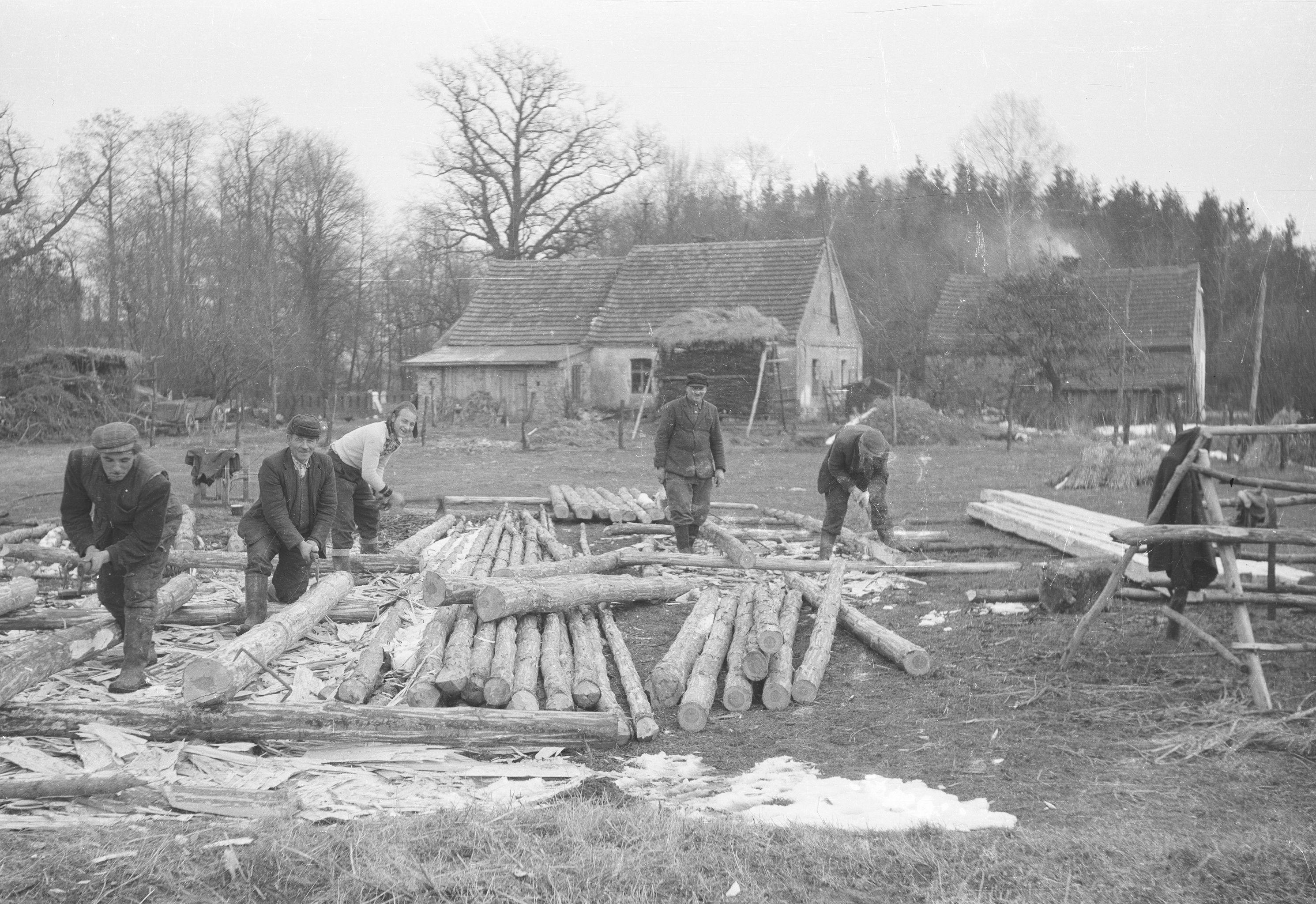 Budowa stodoły, Brzózka, Dolny Śląsk, lata 50. XX w.