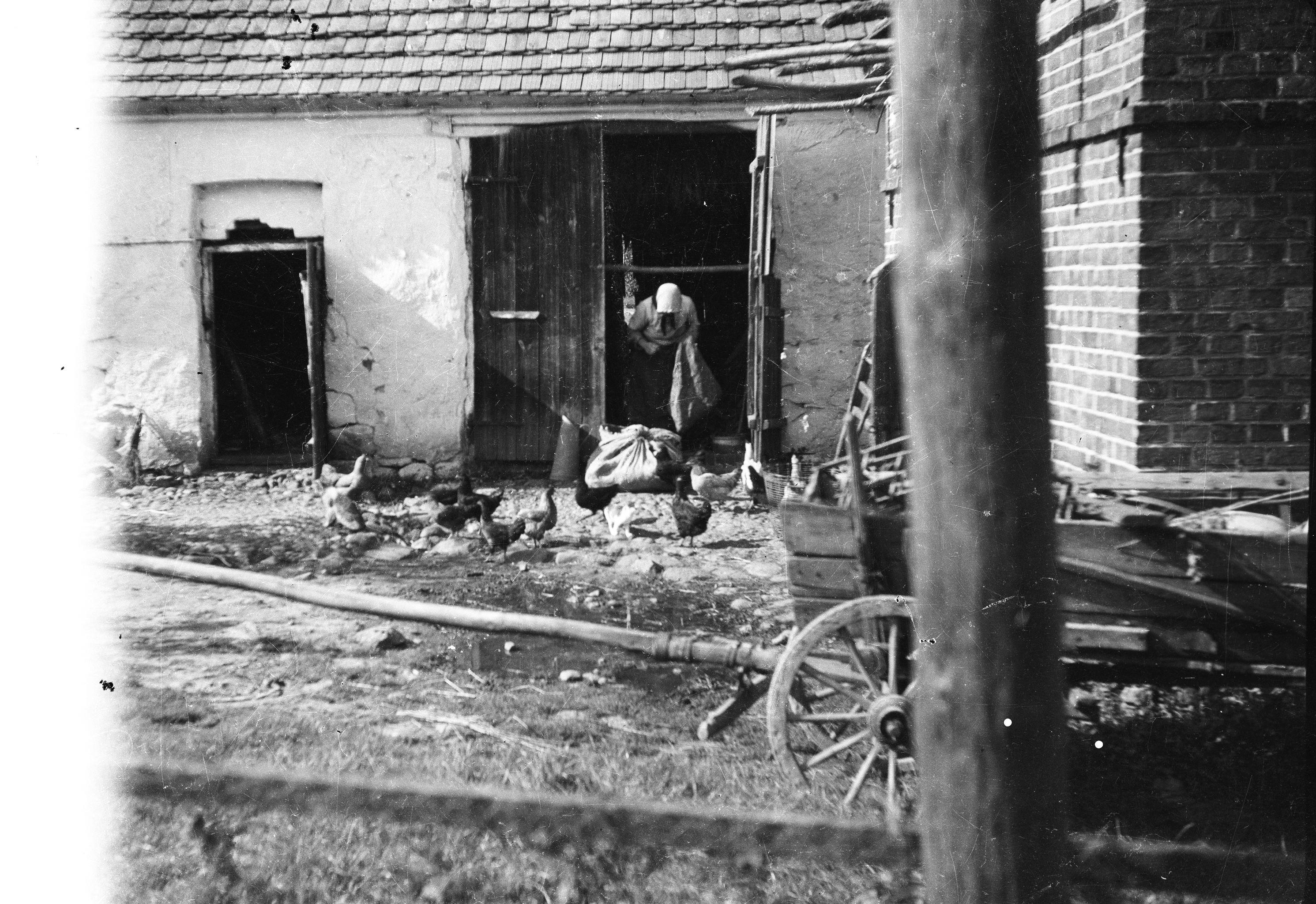 Podwórze u Czyżowiczów, Brzózka, Dolny Śląsk, 2. poł. XX w.