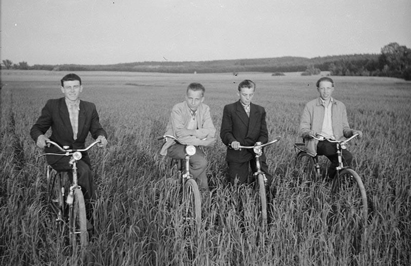 Rowerzyści od lewej: Eugeniusz Szozda, Władysław Klupak, Ludwik Juzwa, osoba nieznana, na polu między Głębowicami a Trzcinicą Wołowską, Dolny Śląsk, koniec lat 50. XX w.