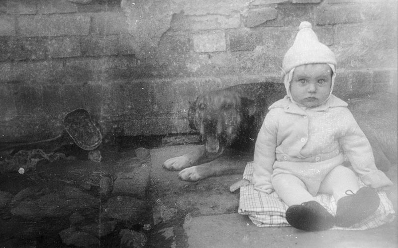 Niemowlę z psem, Dolny Śląsk, 2. poł. XX w.