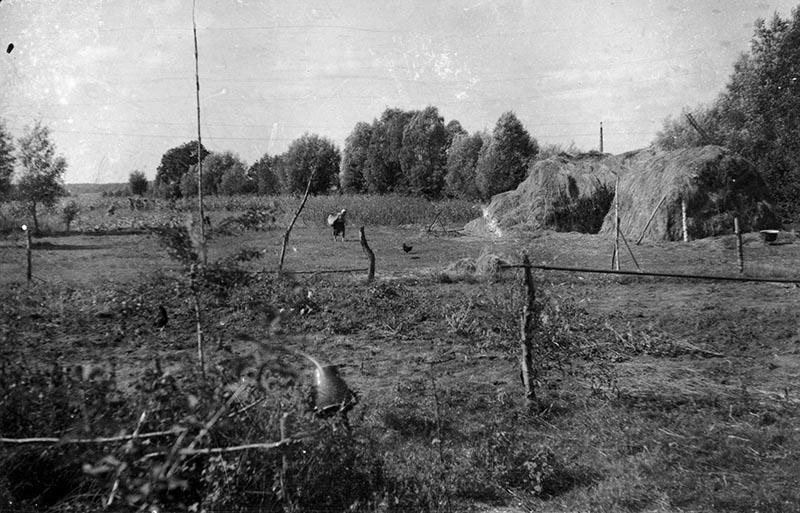 Wiejski krajobraz, Brzózka, Dolny Śląsk, 2. poł. XX w,